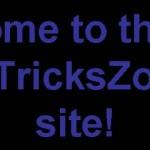 New NoTricksZone Site!