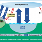 Most Of The Rise In CO2 Likely Comes From Natural Sources