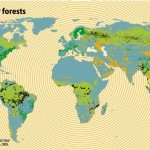 Destruction Of Tropical Forests Making Massive Contribution To Atmospheric CO2 Increase