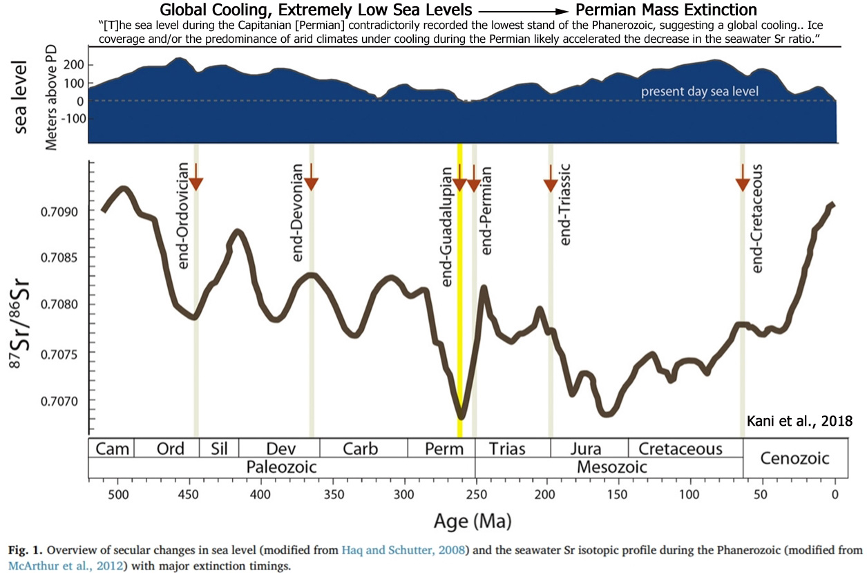 3 New Papers: Permian Mass Extinction Coincided With Global