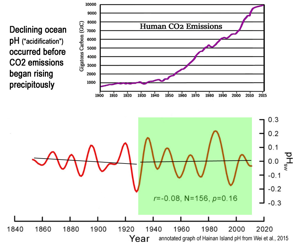 Analysis Finds Oceans Have Become LESS 'Acidic' With Rising