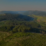 Video Recorded By Drone Drives Home The Wind Park Devastation About To Be Wreaked On An Idyllic German Nature Refuge