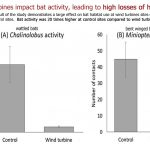 6 New Papers Unsheathe A Hushed-Up 'Green' Reality: Habitats Are Being Destroyed By Wind Turbines