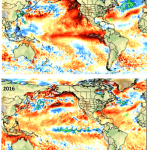 "Global Sea Sea Surface Temperatures Have Seen ""Pretty Dramatic Turnaround,"" Says 40-Year Meteorologist!"