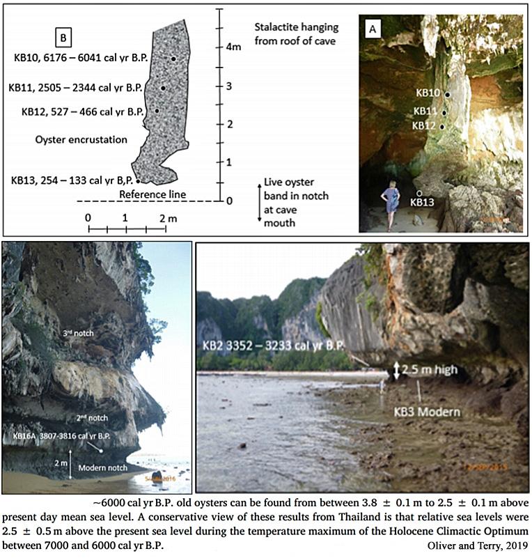 [Image: Holocene-Cooling-Sea-Level-Thailand-Oliv...2019-b.jpg]