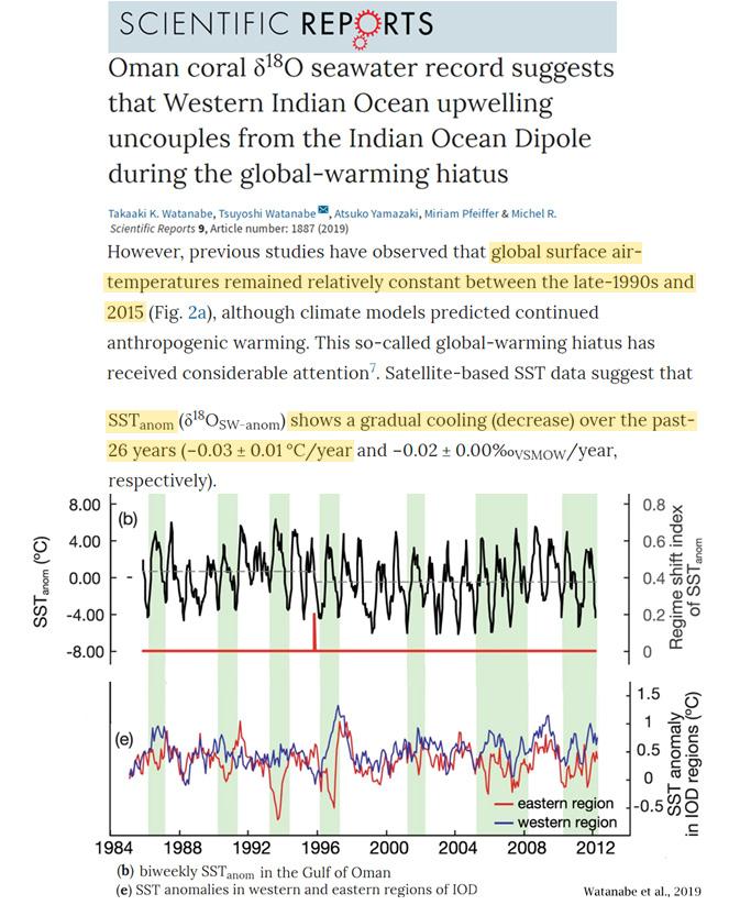 В холодные периоды кораллов гибнет больше — Coral Mortality Rates Higher During Cold Periods